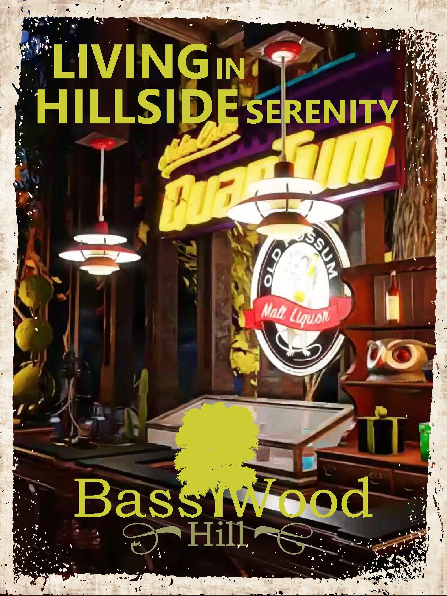 Basswood Hill Modern House